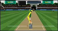 Stick Cricket play cricket online